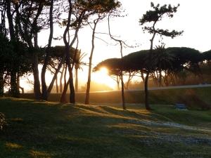 Magdalena imagenes puesta de sol